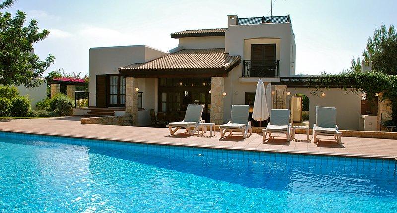 Villa 32 - Limni, holiday rental in Kouklia