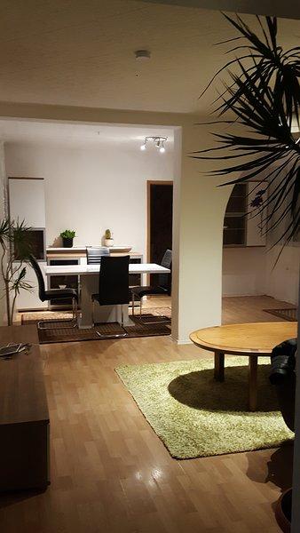 Spacious apartment with garden, vacation rental in Kaiserslautern