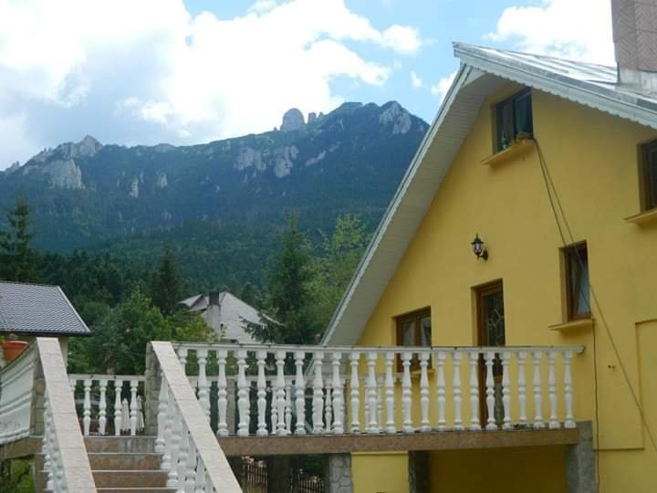 Big house - 100 m from the slopes, holiday rental in Neamt County