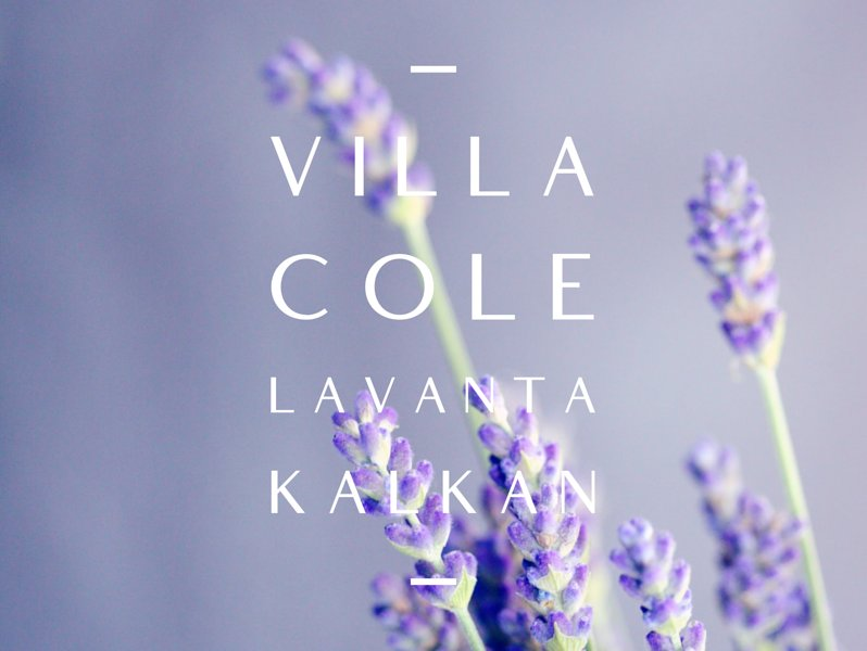 Villa Cole, LaVanta