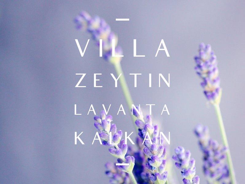 Villa Zeytin, LaVanta