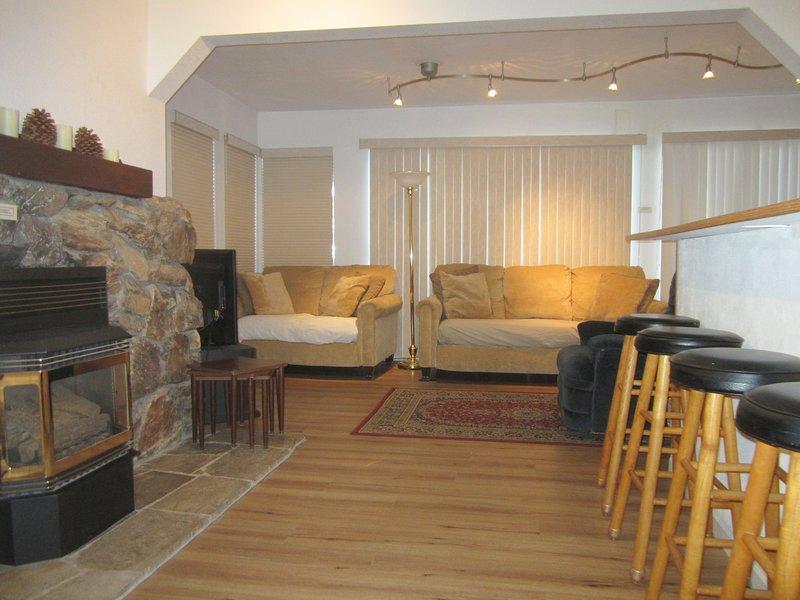 Sala de estar y chimenea de gas