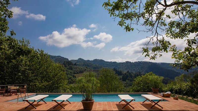 Villa Barsotti historic villa with pool near Lucca, holiday rental in Convalle