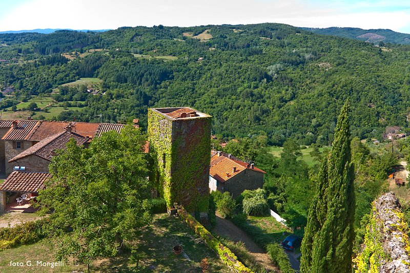The Watch Tower, unique holiday cottage in Tuscany, holiday rental in Stia