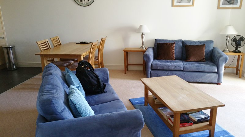 Super, huge 2 bed apt. Jericho.  Perfect for Oxford Colleges. Outstanding value!, vacation rental in Botley