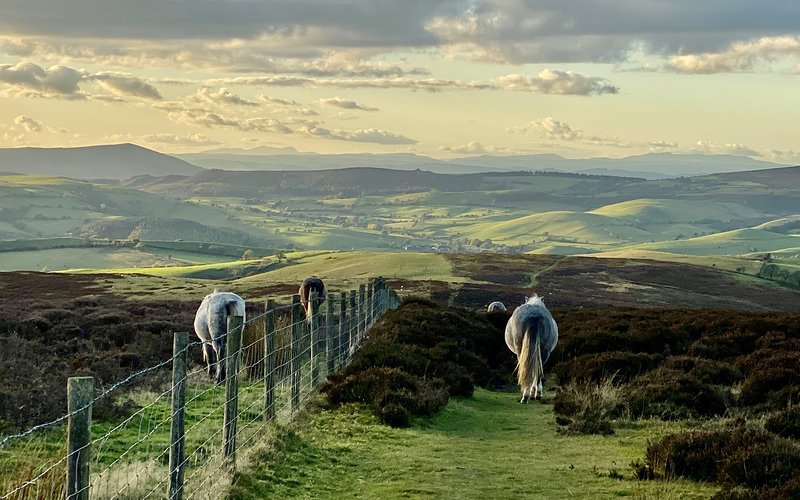 Évadez-vous vers les collines du Shropshire