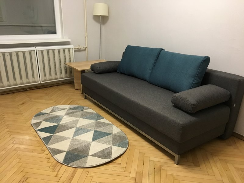 Cozy and quiet apartment in the City Center, holiday rental in Kyiv (Kiev)
