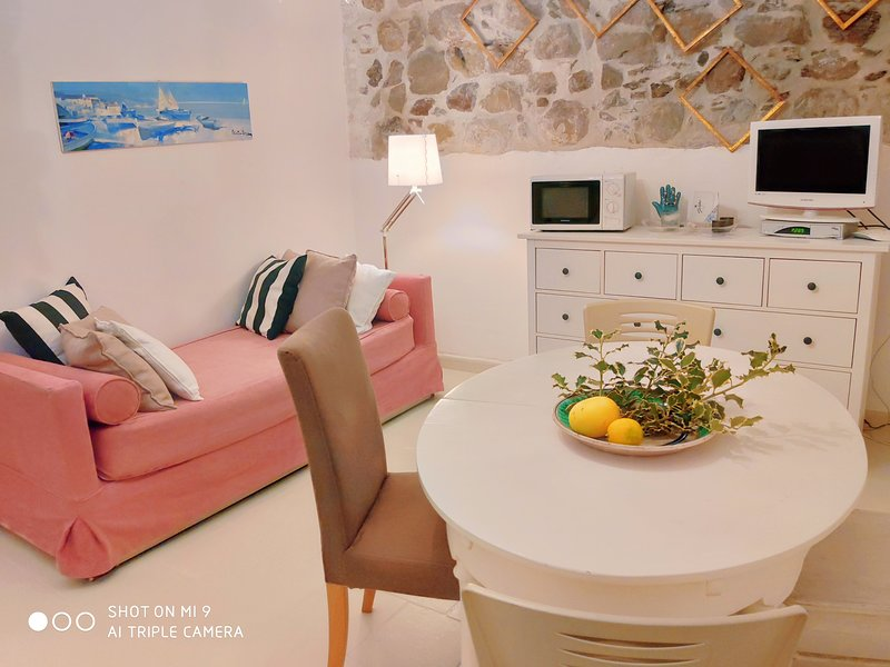 Living_kitchen with air conditioning, double divanbed