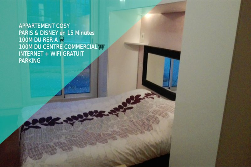 Appartement Paris / Disney, holiday rental in Chelles
