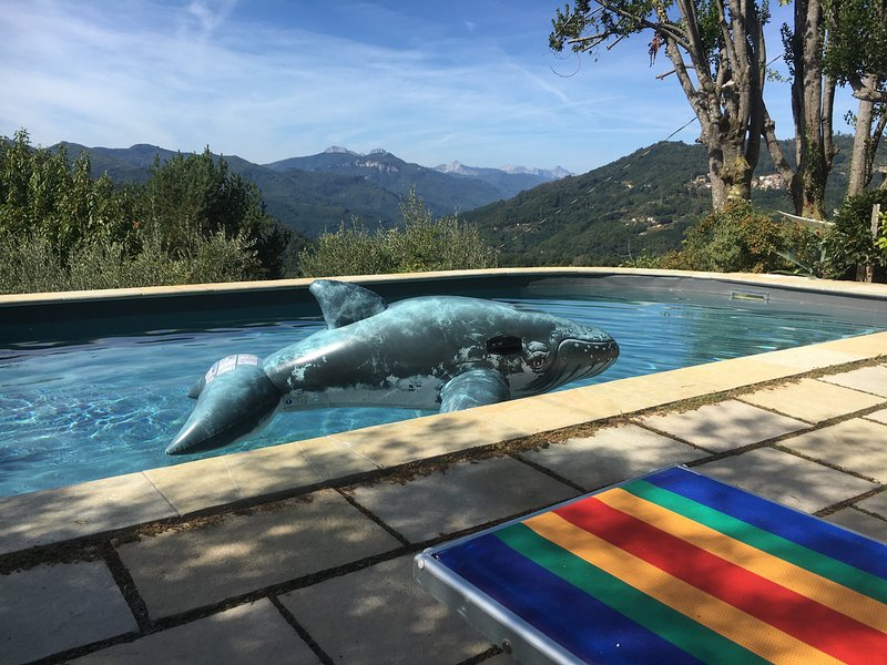 Heated private pool with a view