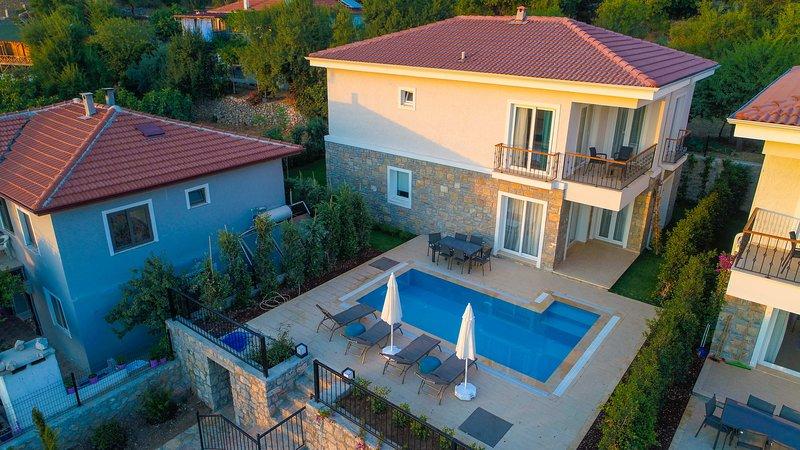 Villa Massi Sogut Daily Weekly Rentals, holiday rental in Sogut