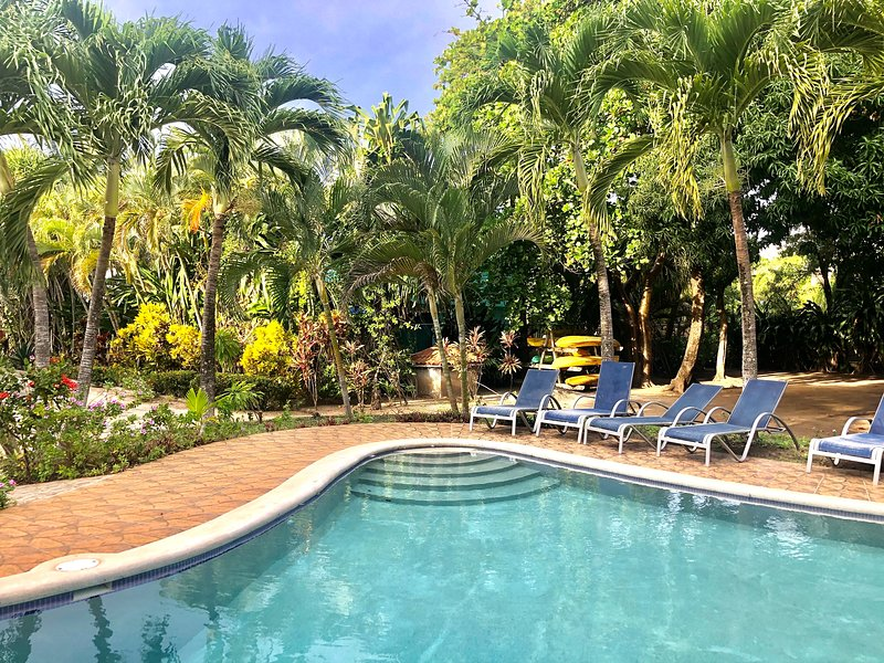 **NEW LISTING!!! Ocean View Villa! Best diving & snorkeling! Pool!!, holiday rental in Sandy Bay