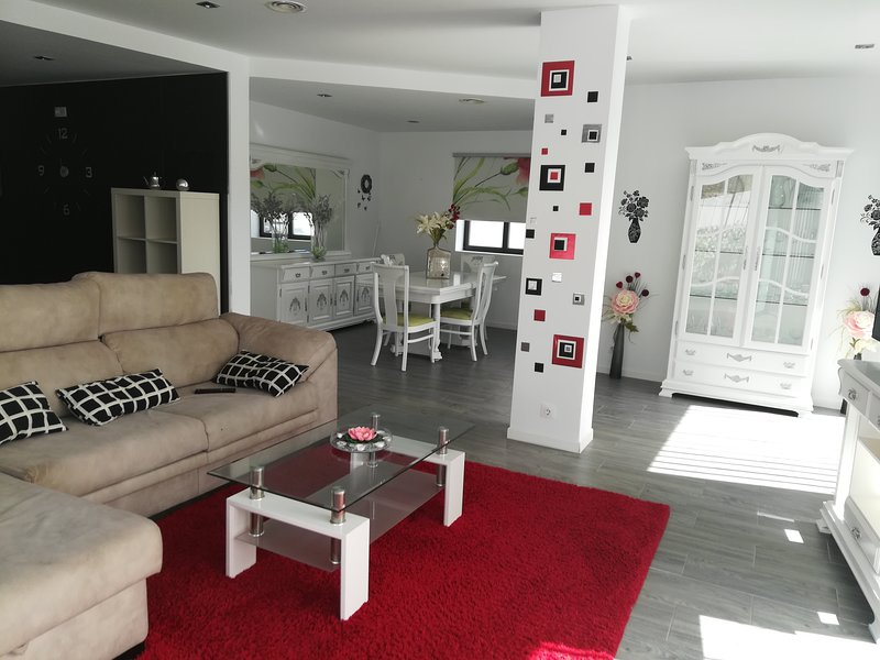 Spacious house with swimming-pool, holiday rental in Morche