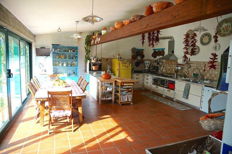 Amazing house with garden & Wifi, alquiler vacacional en Fossacesia Marina