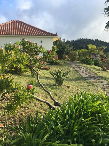 Amazing house with sea view & Wifi, location de vacances à Ponta do Pargo