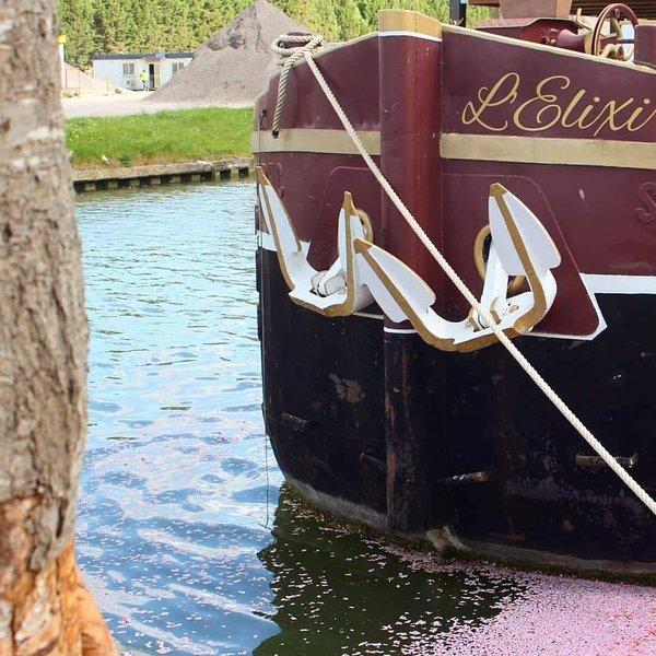 Logement sur l'eau à bord d'une péniche - Guest house on a French boat, vacation rental in Thourotte