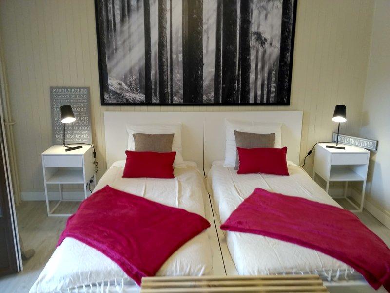 Studio 27m² (rénové en 2019) centre Brides à 300m de la télécabine, holiday rental in Brides-les-Bains