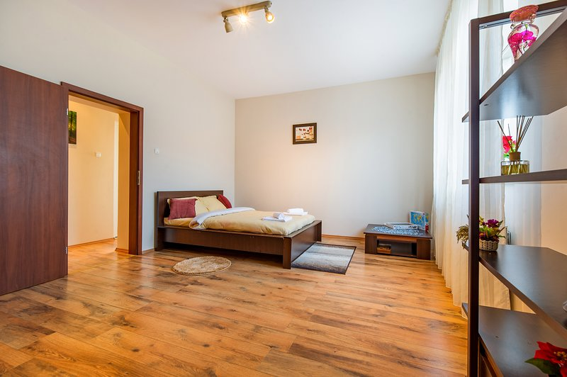 Sphynx Apartment, vacation rental in Brasov