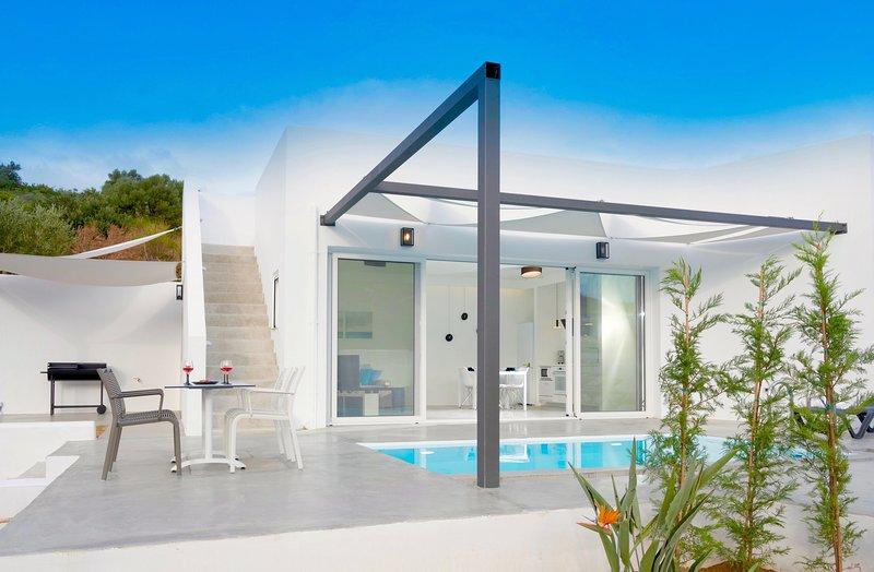 Villa Aricia, holiday rental in Mononaftis