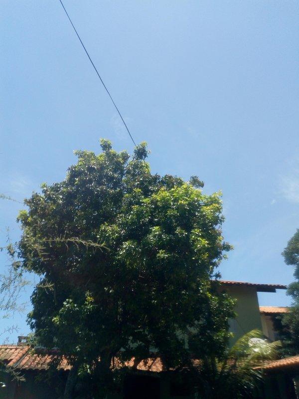 Alugo suíte ampla, TV,geladeira,ventilador e internet WiFi. Itaúna, holiday rental in Jacone
