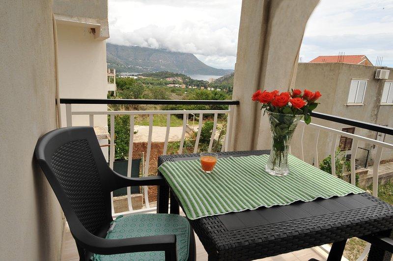Apartments Sea Star - One Bedroom Apartment with Balcony (A2), casa vacanza a Celopeci