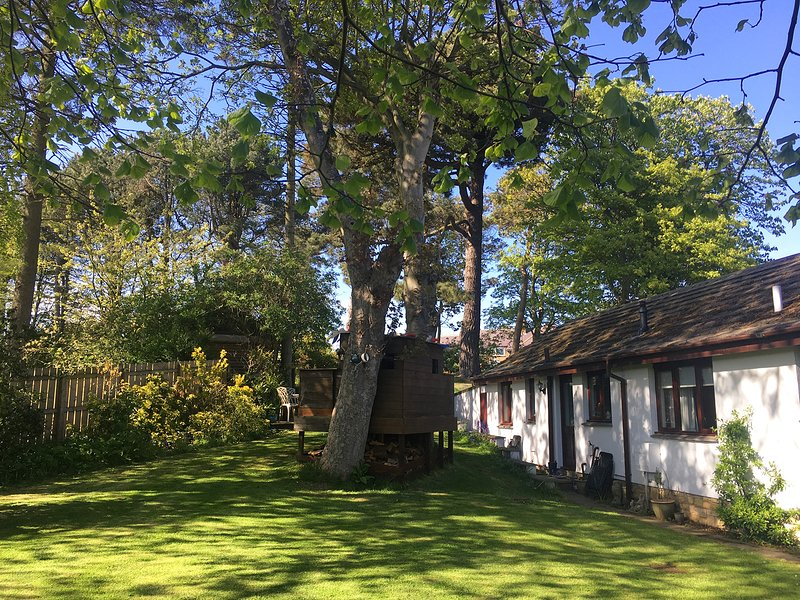 Midwood Lodge with woodland garden, treehouse, parking, 5 mins walk to beach, Ferienwohnung in Alnwick