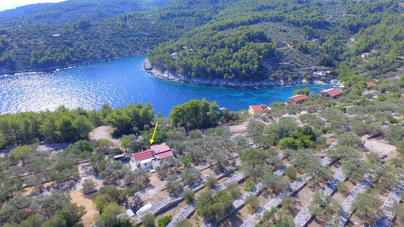 Vacation House Planika - Two Bedroom Holiday Home with Terrace and Sea View, alquiler vacacional en Vela Luka