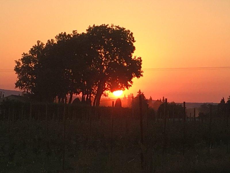 Belle Bastide au cœur des vergers, holiday rental in Cavaillon