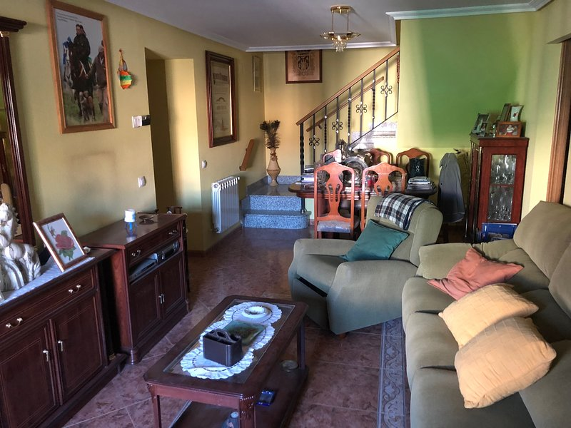 Spacious house with terrace, holiday rental in Montejo de Arevalo