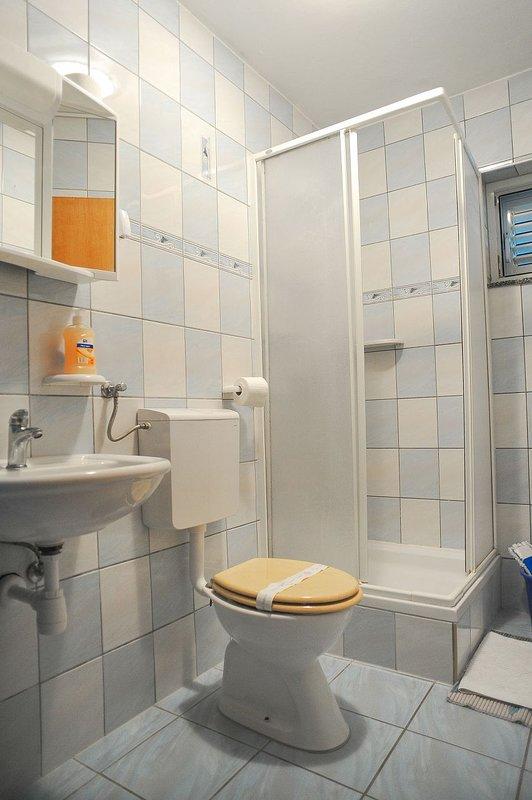 A1 (4 + 2): badkamer met toilet