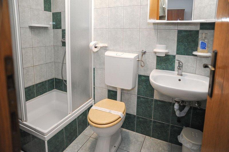 A6 (2 + 2): badkamer met toilet