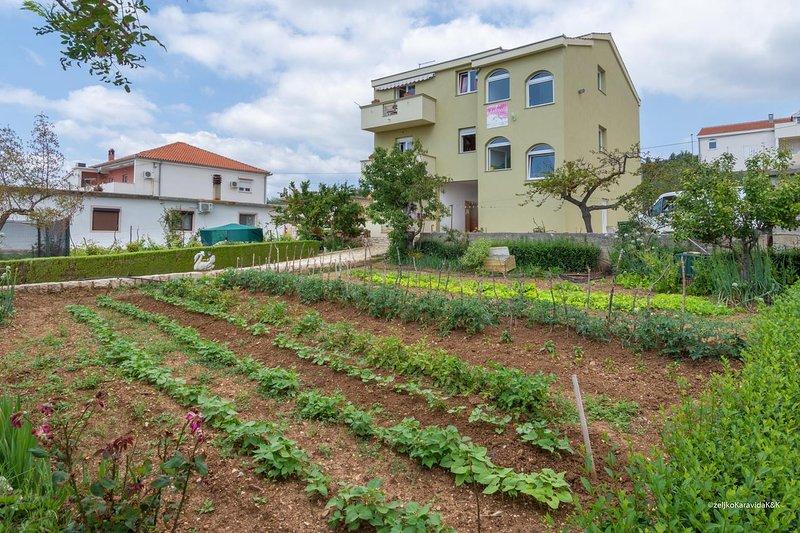 One bedroom apartment Posedarje, Novigrad (A-6190-b), vacation rental in Posedarje