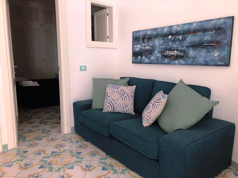 Amazing apt with terrace, holiday rental in Marina Grande