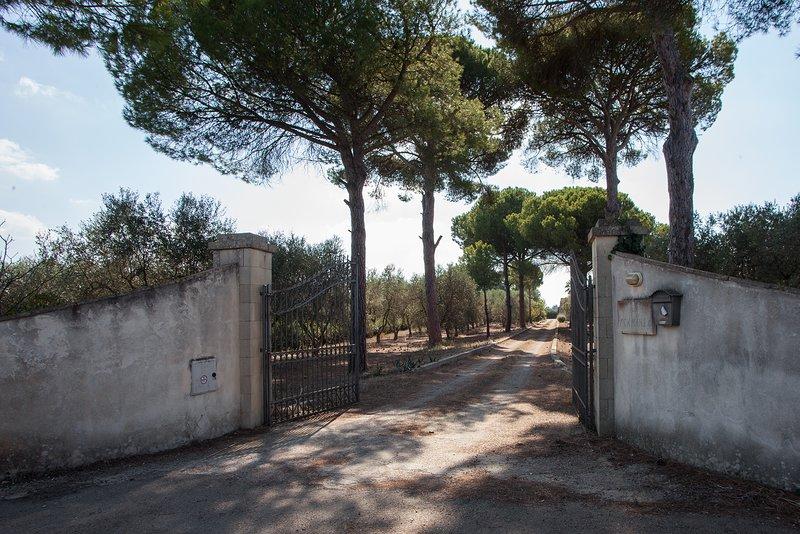 Bilocale nelle campagne Pugliesi con piscina m543, holiday rental in Soleto