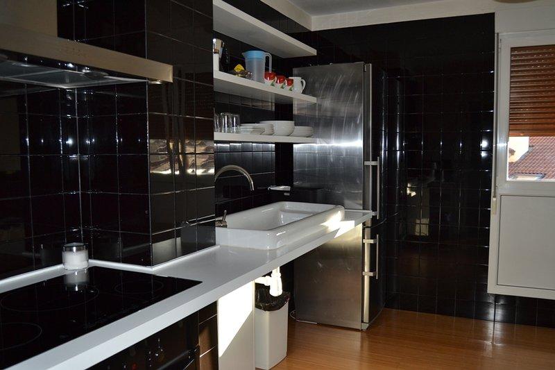 amplio apartamento centro cangas de onis, holiday rental in Seguencu