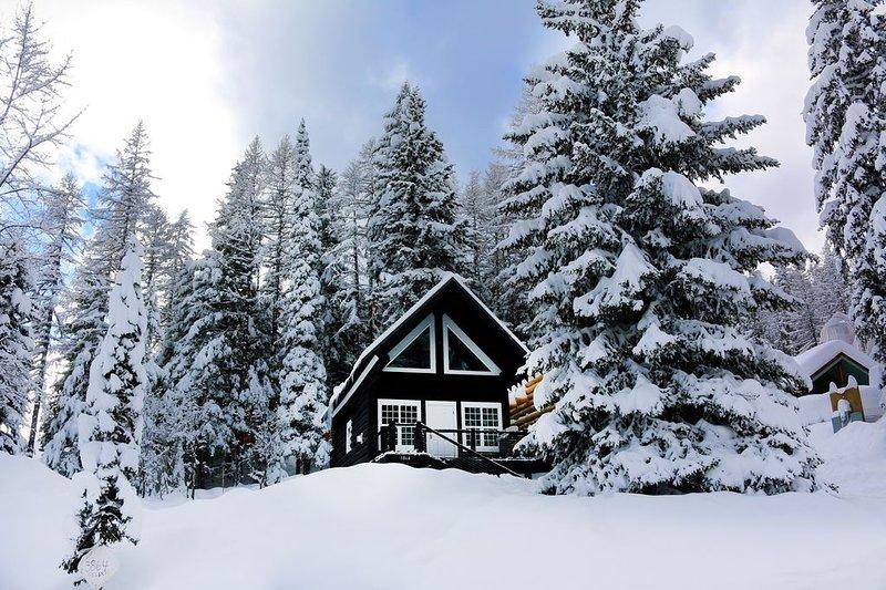 Tree,Fir,Outdoors,Nature,Building