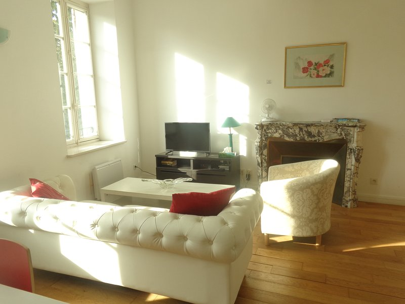 88 rue Albert Tomey, vacation rental in Carcassonne Center