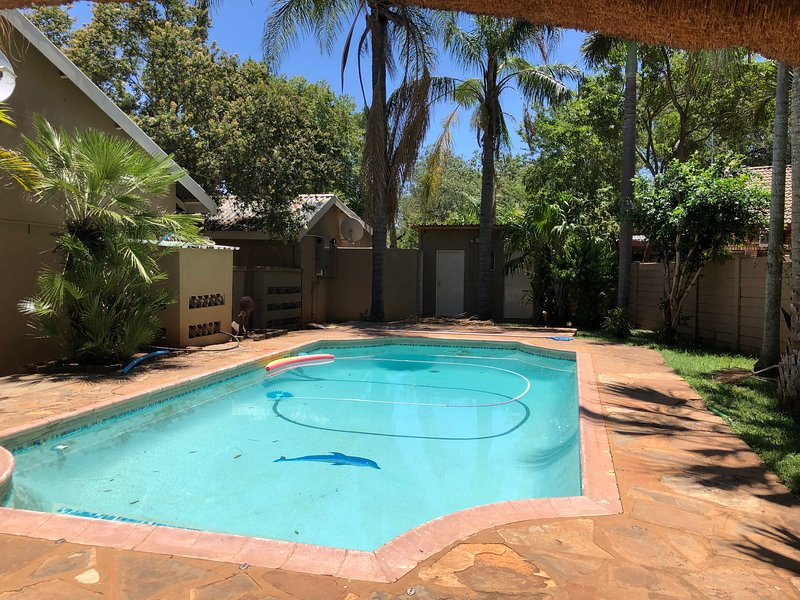 Shared use of Main House Swimming Pool - Our friendly Dogs also share this space.