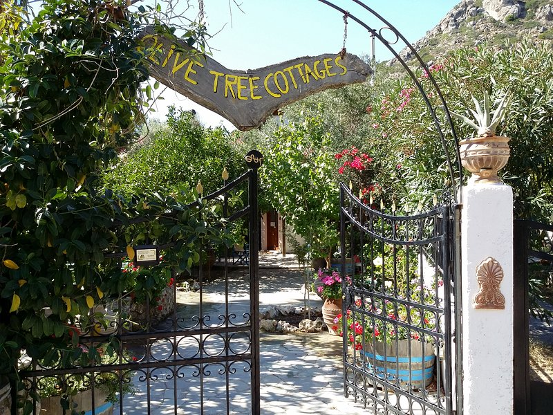 Olive tree Cottages 4, holiday rental in Sougia