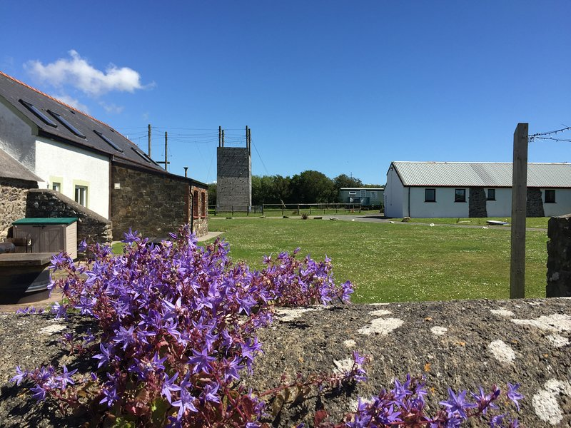 The back of Skomer Lodge with lots of grassed areas