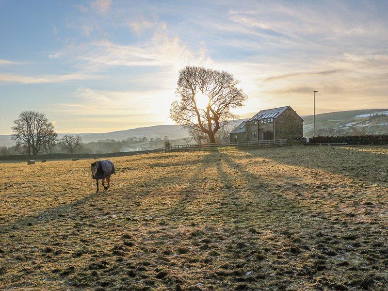 Briar Barn, St John's Chapel, holiday rental in Allenheads