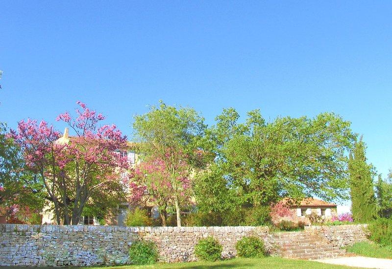 Domaine de Conillières: Exterior view