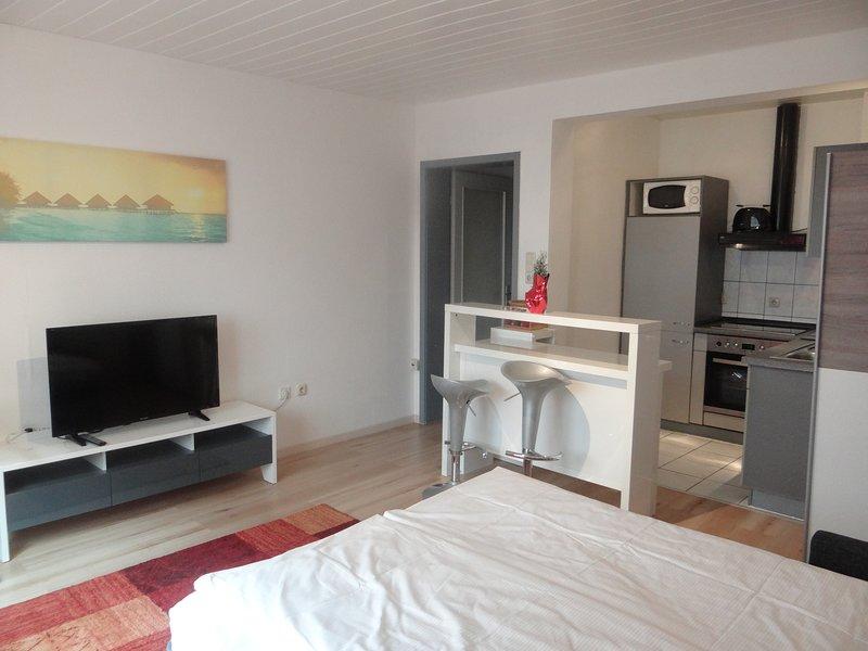 Apartment in Innenstadtnähe EG 02, vacation rental in Dietzenbach