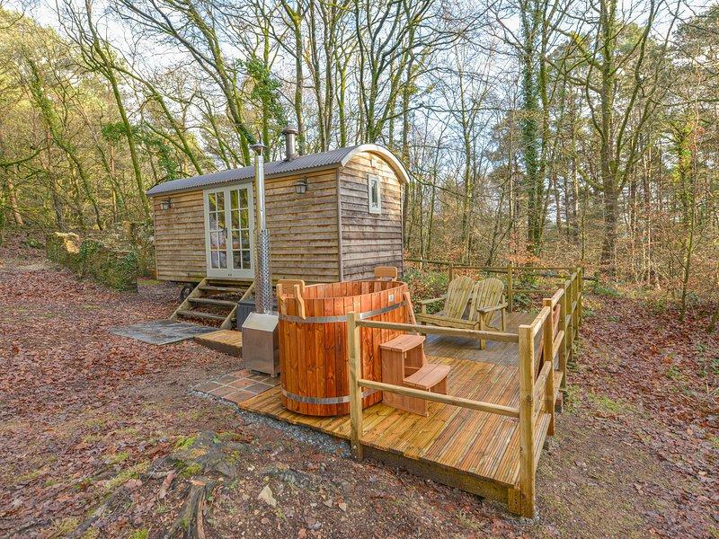 ROCK VIEW SHEPERD'S HUT, woodland retreat, studio accommodation, Tamar Valley, casa vacanza a Chillaton