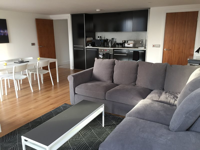Toothbrush Apartments - Ipswich Waterfront - Quayside, vacation rental in Ipswich