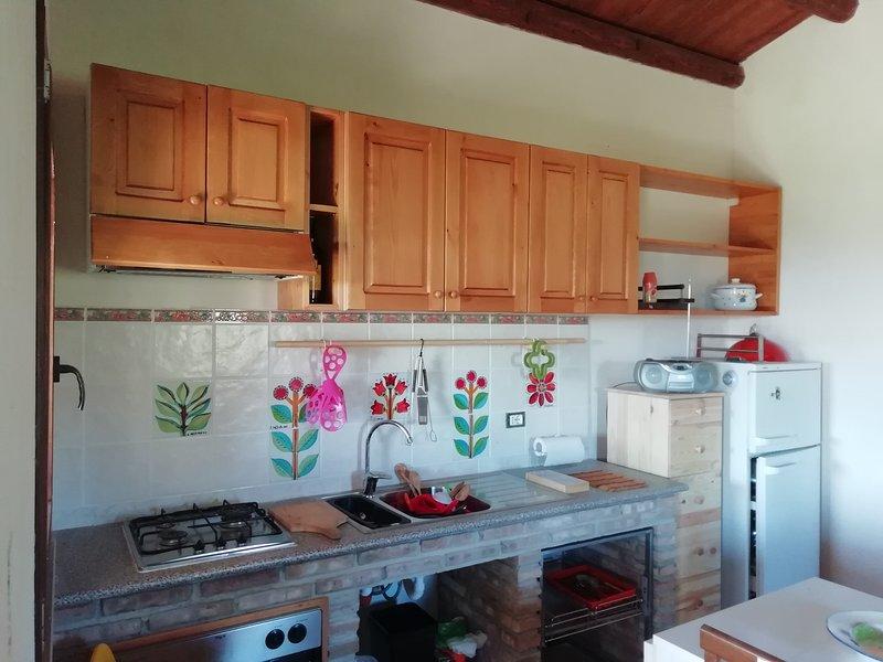 Amazing studio with terrace, vacation rental in Cammarata