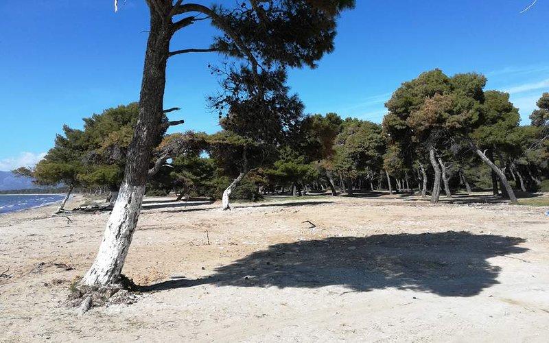Spiaggia Schinias, a 10 km dalla casa