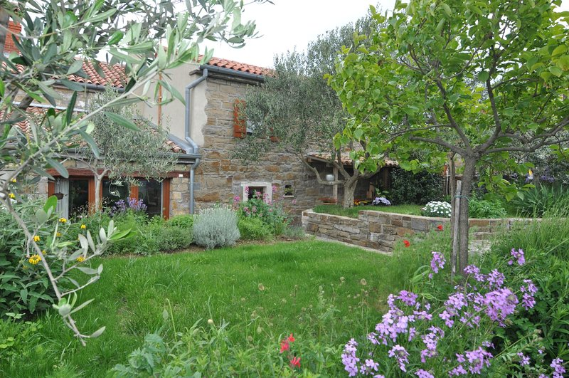 Istrian Stone House, holiday rental in Dragonja