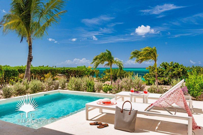 TC Villas // Beachfront Villa Sandpiper // Built on the beach!, location de vacances à The Bight Settlement