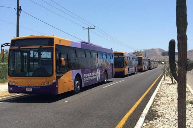 Você pode pegar o ônibus do lado de fora do aeroporto.